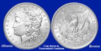 1902-P Morgan Silver Dollar - Collector's Circulated Condition