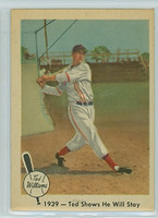 1959 Fleer Ted Williams 13 Shows He Will Stay Excellent to Mint