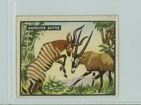 1950 Bring Em Back 23 Antelope Battle Very Good