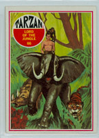 1966 Tarzan 66 Lord of the Jungle Excellent