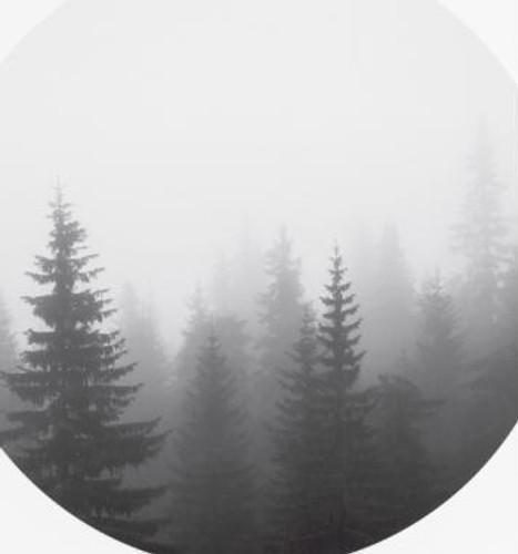 Print Circular Forest
