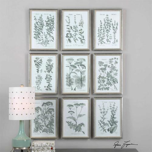Herb Garden Set/9 - Framed Artwork