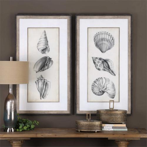Antique Shells Set/2 - Framed Artwork
