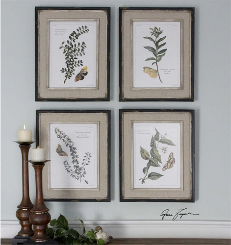 Butterfly Plants Set/4 - Framed Artwork
