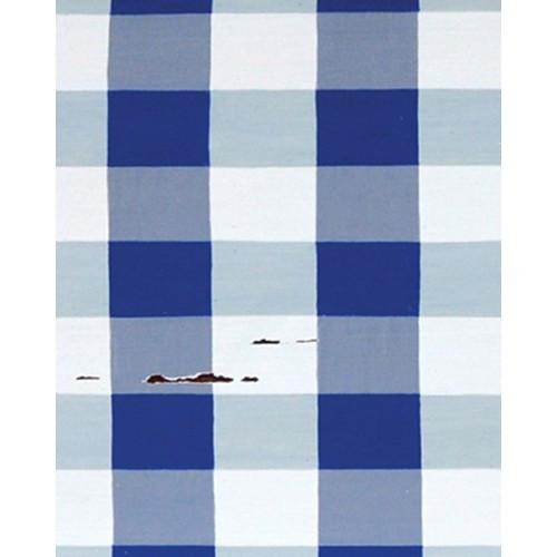 A257 Blue & White Plaid