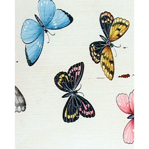 A43 Colorful Butterflies