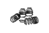VW Mk4 Eibach Pro-Kit Spring Set