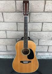 Martin D-12-35 12-String Brazilian Rosewood - 1969