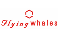 Flying Whales