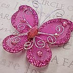 "Butterfly - 2"" Fucshia"
