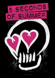 Five Seconds Of Summer Poster Flag Skull Love Tapestry