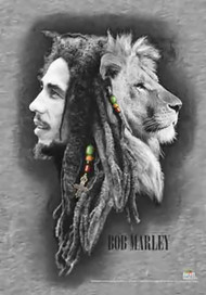 Bob Marley Poster Flag Lion Profiles Tapestry