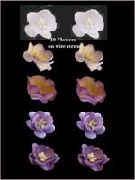 42296 Blossom Purple SET