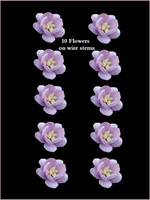 42270 Blossoms Lavender