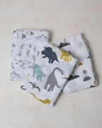 Dino Friends Swaddle Blanket Set Cotton Muslin 3-pc