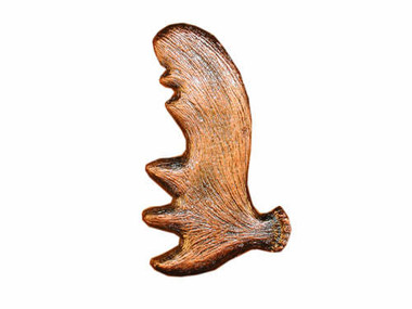 ... Moose Antler Cabinet Hardware Knob   Right Facing. Image 1