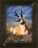 Desert King - Tom Mansanarez Wildlife Art Pronghorn Antelope