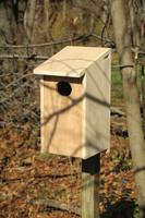 Wood Duck Joy Box in Solid Cypress.
