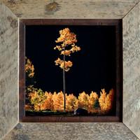 Rustic Frames - 16x24 Barnwood Frame with .5 inch Alder Inset