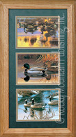 Waterfowl, Cynthie Fisher Wildlife Art Framed Set 10x20