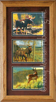 Mossy Bog, Greg Beecham Wildlife Art Framed Set 10x20