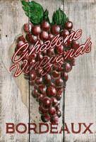 Vintage Grapes Sign