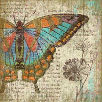 Vintage Butterfly Left Sign