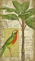 Vintage Parrot I Sign