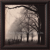 A black and white photo depicting old trees and a dirt path in the morning fog - Harold Silverman Print