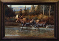 Fall Reflections - Hayden Lambson Wildlife Art Giclee - Moose