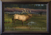 Coming to the Challenge - Hayden Lambson Wildlife Art - Giclee