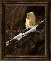 A Warm Winter View - Mitchell Mansanarez Wildlife Art Giclee