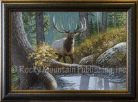 September Encounter - Dallen Lambson Giclee - Wildlife Art