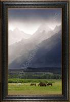 Misty Morning - Mitchell Mansanarez Landscape Photograph - Framed Giclee