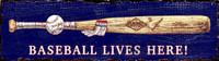Vintage Baseball Lives Sign