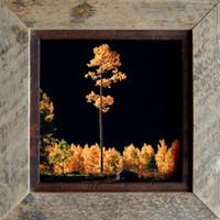 Rustic Frames - 8.5 x 11 Barnwood Frames with .5 inch alder inset
