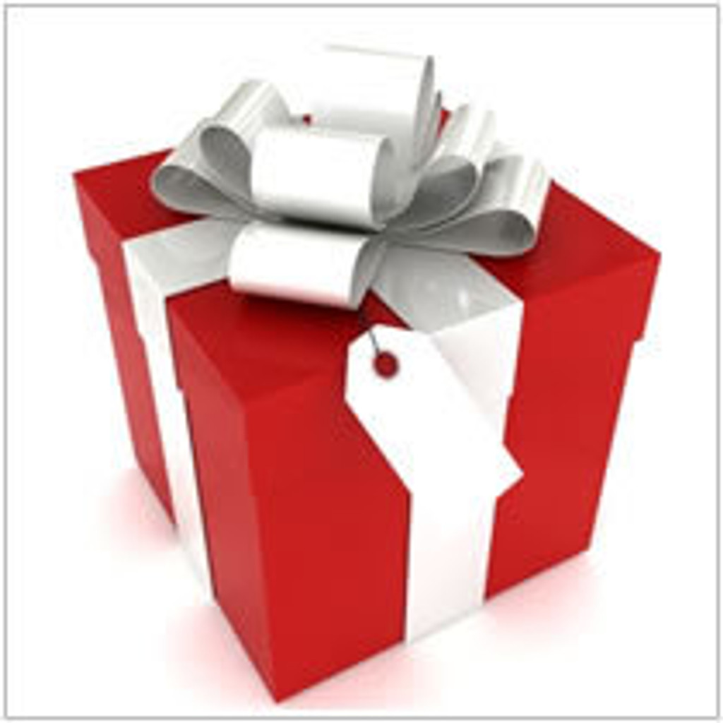 BBQ Gifts Under $25