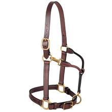 Western Brown Leather Halter with Brass Hardware Tripple Stitched By Aledo Saddlery