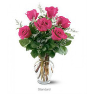 Pink rose perfection(includes vase) free delivery