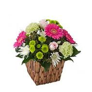 Cherish/ white carnations