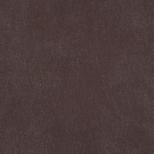 swatch-aniline-chocobrown.jpg