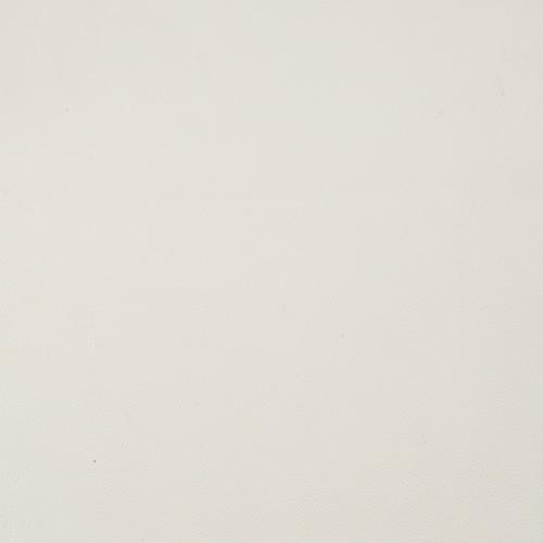 swatch-aniline-white.jpg