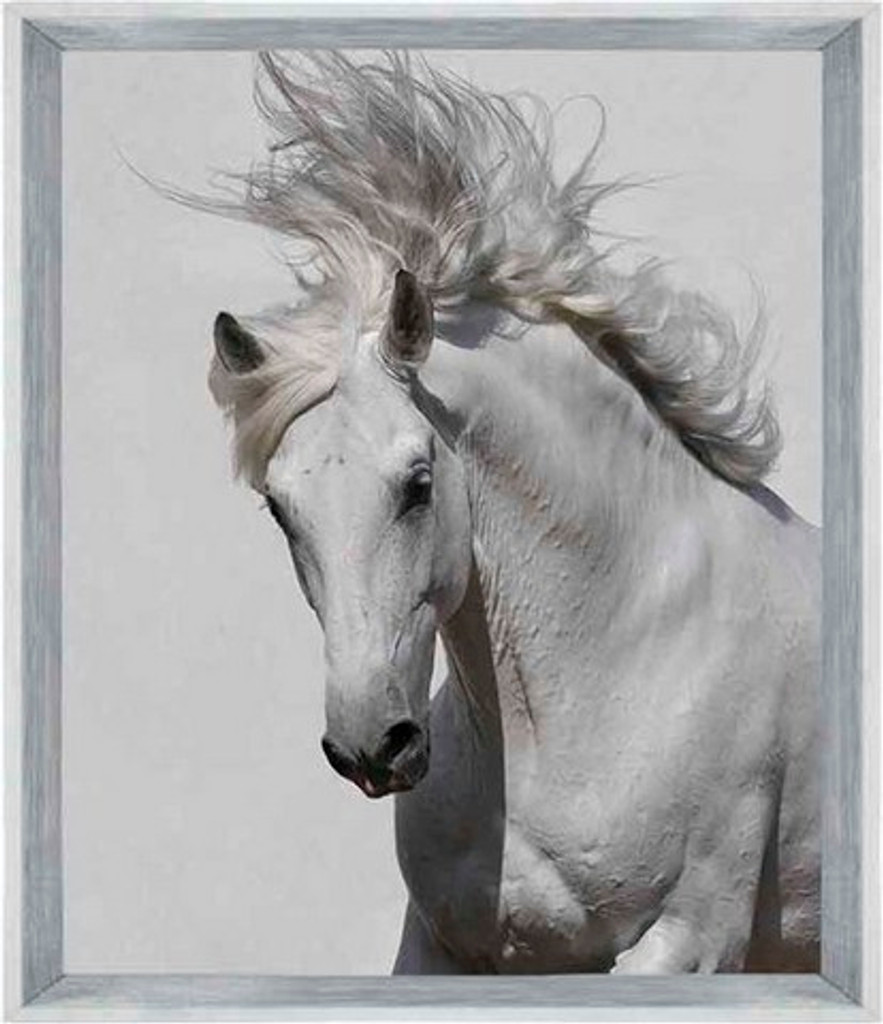 On Trend Image | Horse Magic | Print Decor, Melbourne
