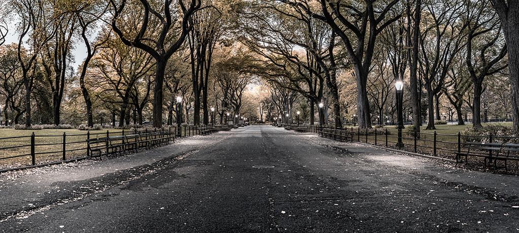 Poets Walk Central Park