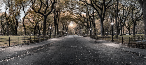 Photography | Poets Walk Central Park | Wide Format | by Nick Psomiadis