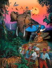 Surf Safari [Limited Edition]