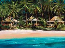 Island Hood [Limited Edition]