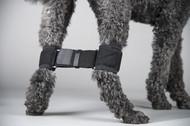 Canine Rear Leg Hobble System