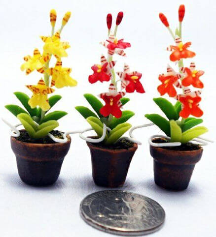 miniature-oncidium.jpg