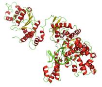 Taq Polymerase Master Mix 2x  - 1mL - 40 reactions